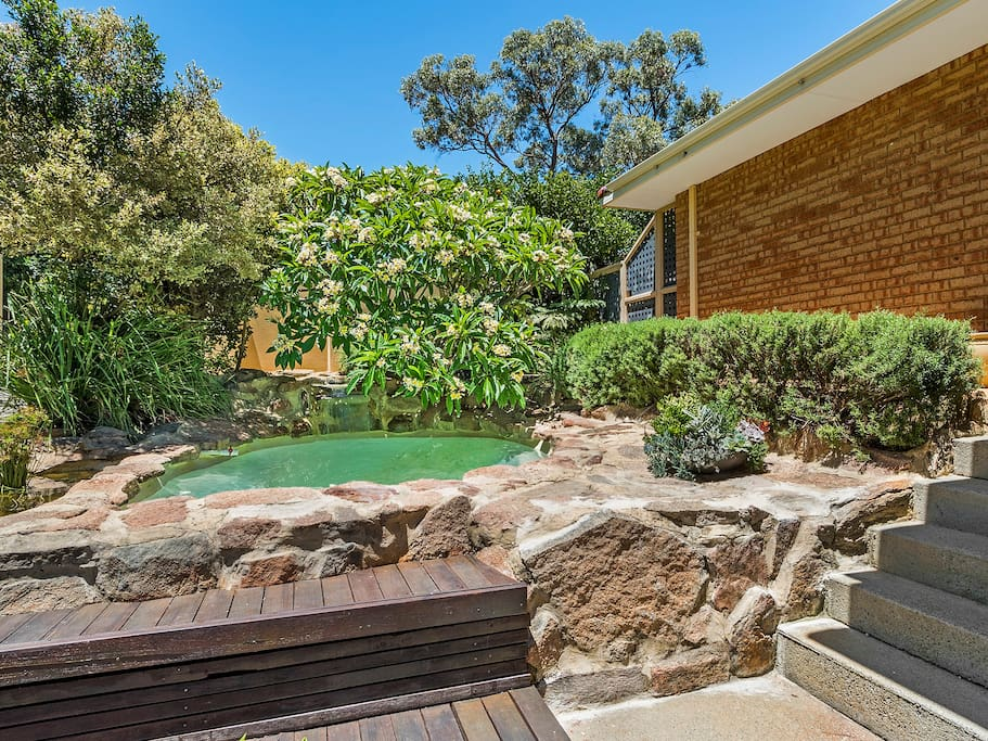 Shared plunge pool you can use to cool off and relax
