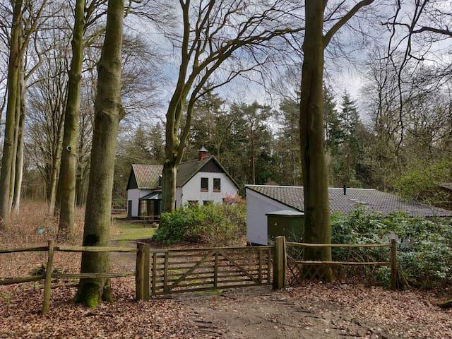 """""""t Hofje van Bieduinen - Cottage in the Woods"""