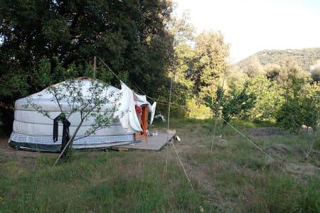 Yourte - Tallone - Yurt