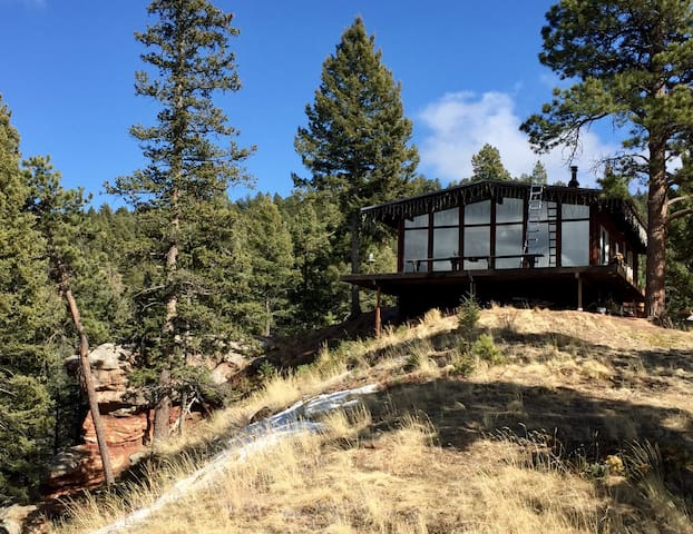 Gorgeous mountain cabin near town! - Woodland Park - Hytte