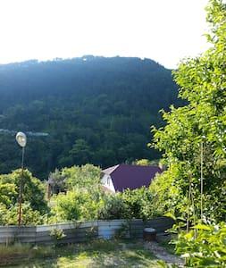 Дом в поселке Холодная речка (Абхазия) - null - House - 2