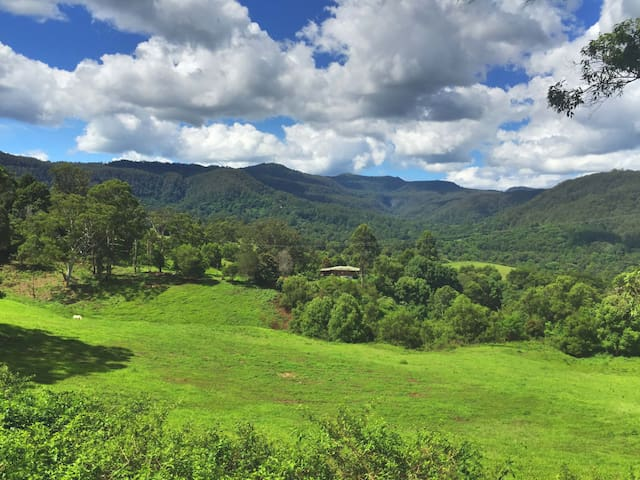 Nightcap Farm Stays Nimbin - Nimbin - Lodge immerso nella natura