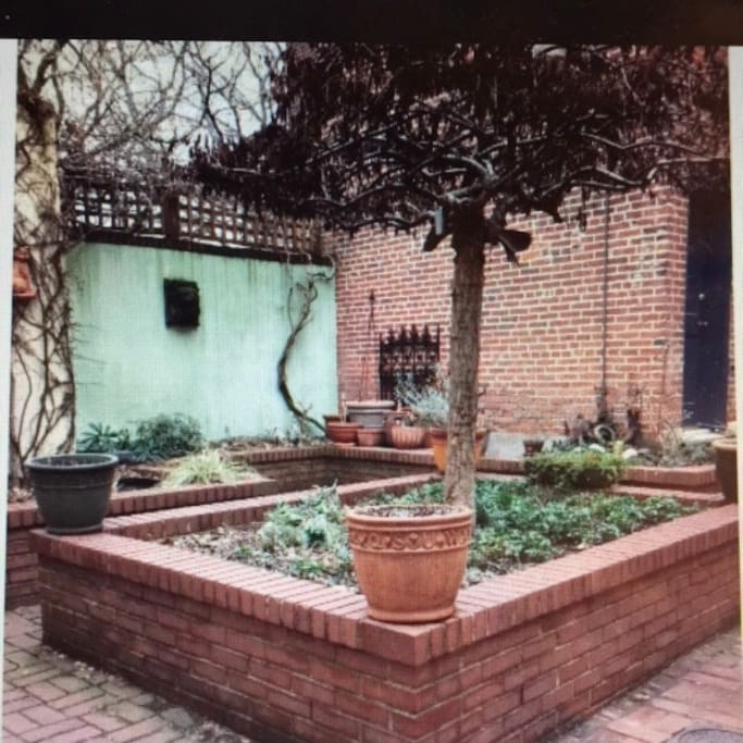 Courtyard in the alley