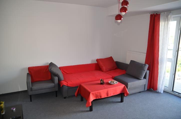 Cosy apartment  in South East Krakow - Kraków - Apartmen