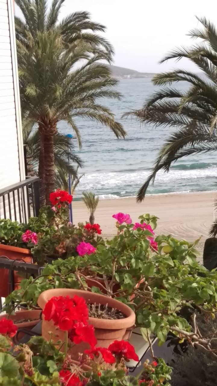 Benidorm Playa Poniente