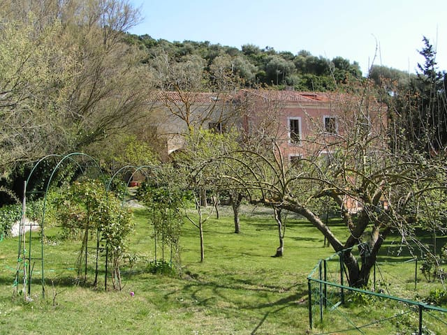 Beautiful apartment in a suggestive country house - Codrongianos - Daire