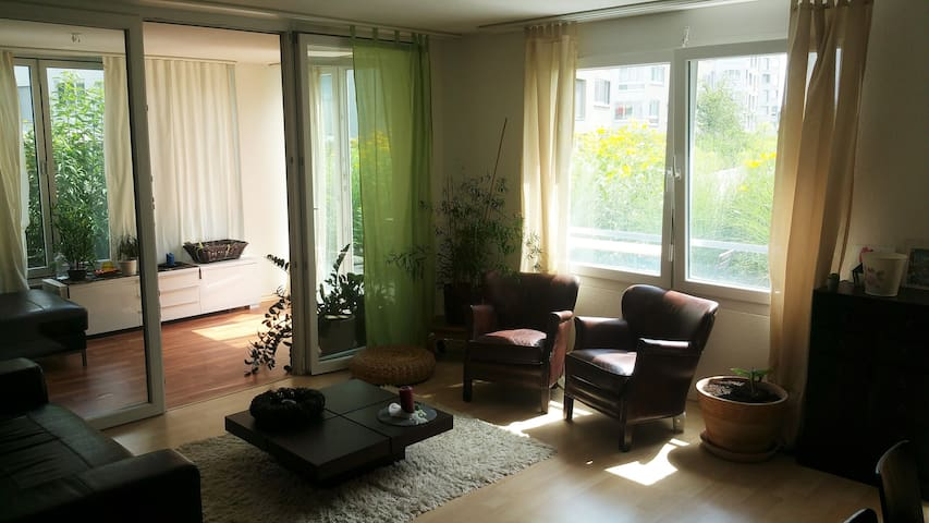 Nice Room near Airport and Zürich down town