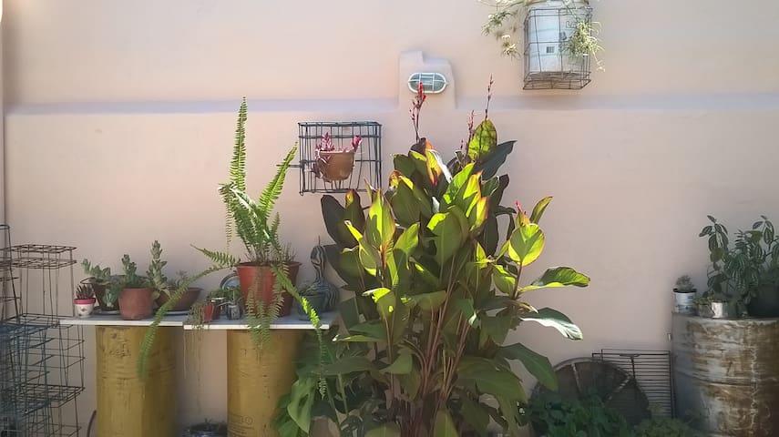Casa con patio, Lugar para vehículo. Alta Cordoba - Córdoba - Talo