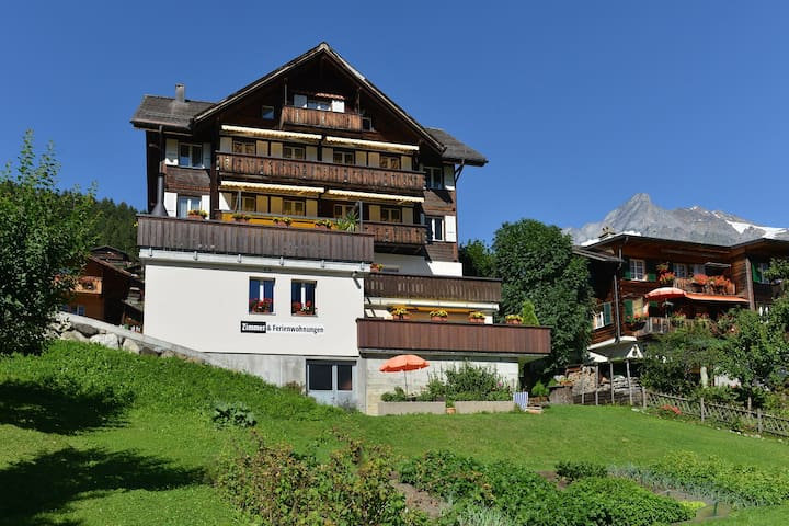 2 - 3 person holiday apartment, Grindelwald