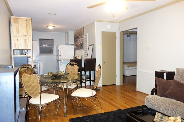 2 BR Apartment in the Museum / Medical Center Area