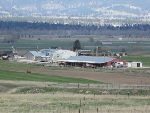Panoramic Views & Dog Heaven on the farm