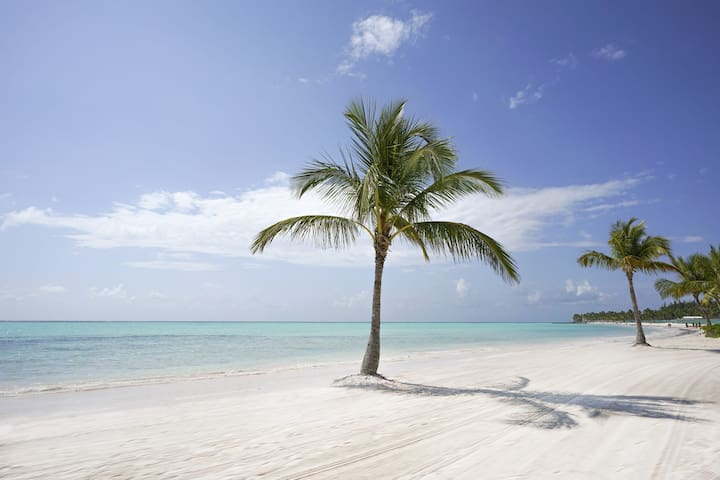 Andrea's Punta Cana guidebook