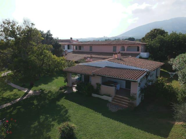 Families Holidays in vineyard - Glicine apt