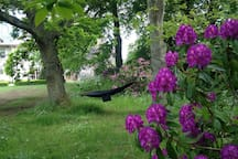 Shaded relaxation area with a hammock near the parterre, the main lawn and rhododendrons