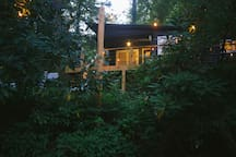 Creekside Wander Cabin On The Edge of Downtown