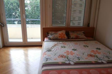Bright studio few mins from centre - Geneva - Apartment