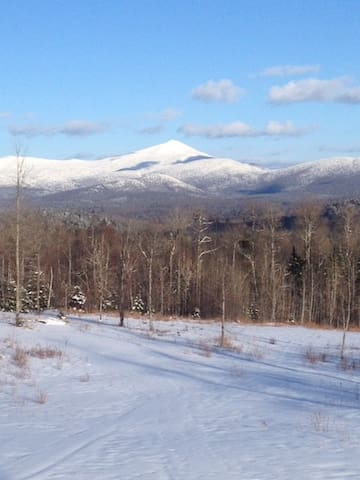 Peaceful Adirondack Getaway - Bloomingdale - Apartament