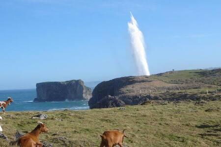 Asturias mar y montaña+ Wifi,  Celorio/Llanes