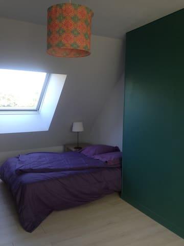 Chambre verte et violette.