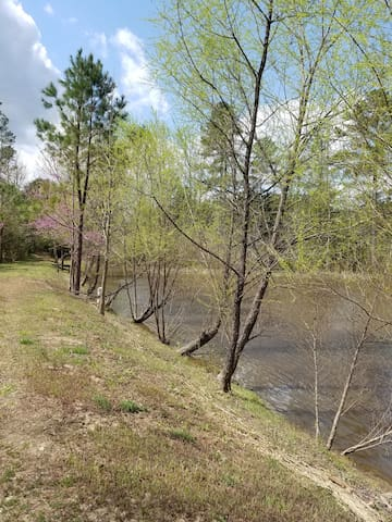 Two acre pond on the property is stocked with bass, blue gills and catfish.