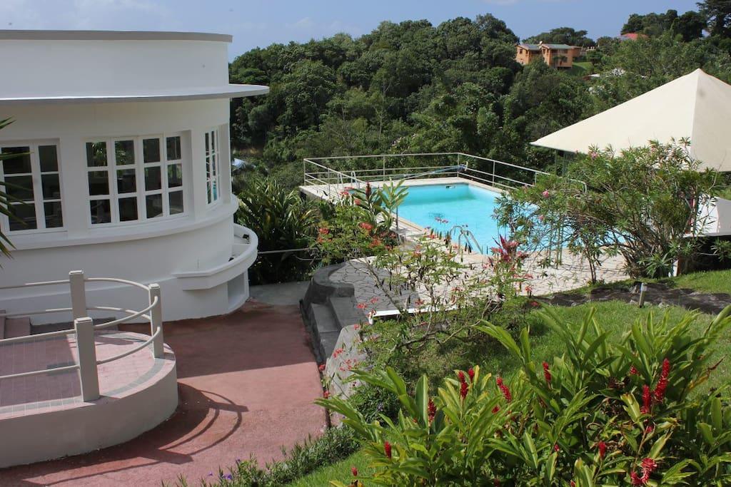 Villa d 39 exception piscine balata houses for rent in fort de france fort de france martinique - Piscine miroir prix fort de france ...
