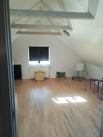 Stort, lyst værelse i nyrenoveret hus