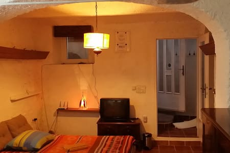 CONVERTED WINE CELLAR, BASEMENT - Jesenice - Pis
