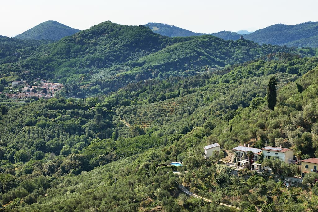 Panoramic view showing the whole estate - three houses, recording studio, swimming pool and olive grove - amazing location
