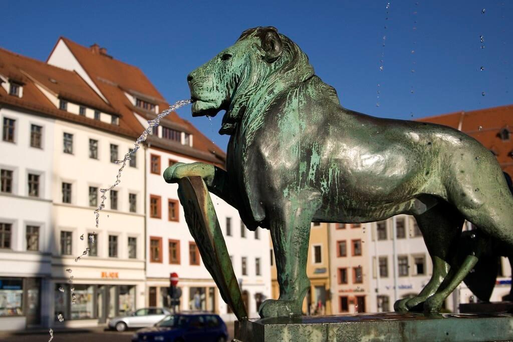 Leo in Obermarkt - Freiberg