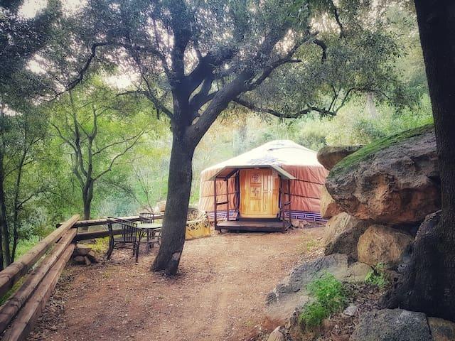 Sardinia Yurt Hideaway