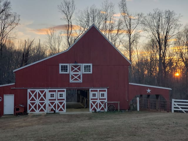 Maple Hollow Farm - A Little Piece of Heaven
