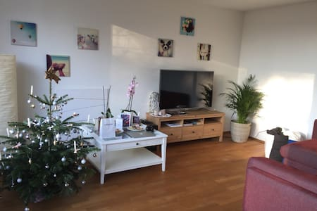 Central & cosy apartment, 15 mins. to the airport - Winterthur