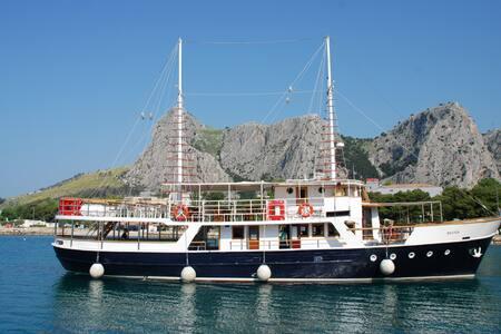 Delfin -DAY-  cruiser - Umag