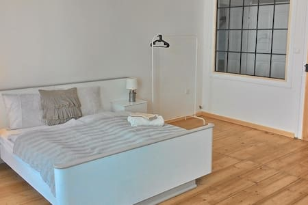 Spacious apartment for a group or family