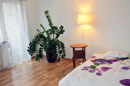 Super charming room in hip Wiedikon - Leilighet
