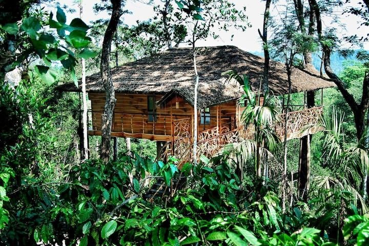 GulMohar Tree house on 400 acre coffee estate