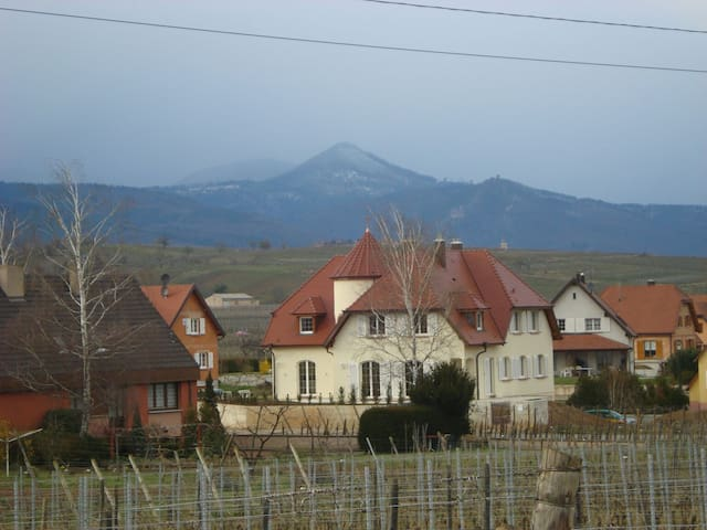 "Gîte spacieux "" Le Castel"" - Bennwihr - House"
