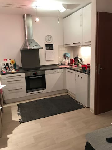 luxury apartment in the middle of Mainz city