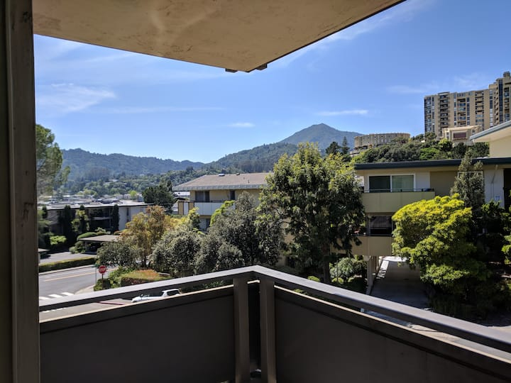 Gorgeous Escape: condo with Mt.Tam Views