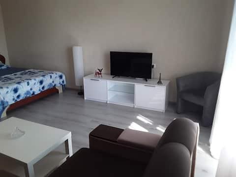 Renovated, stylish apartment in Nikolaev Center