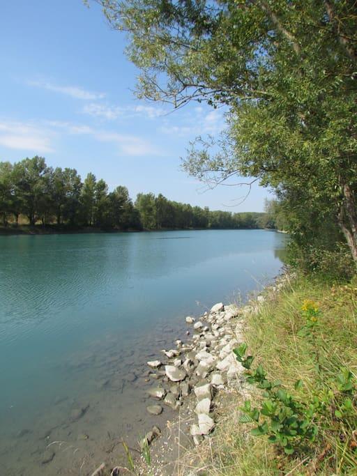 Le long du Rhône sauvage