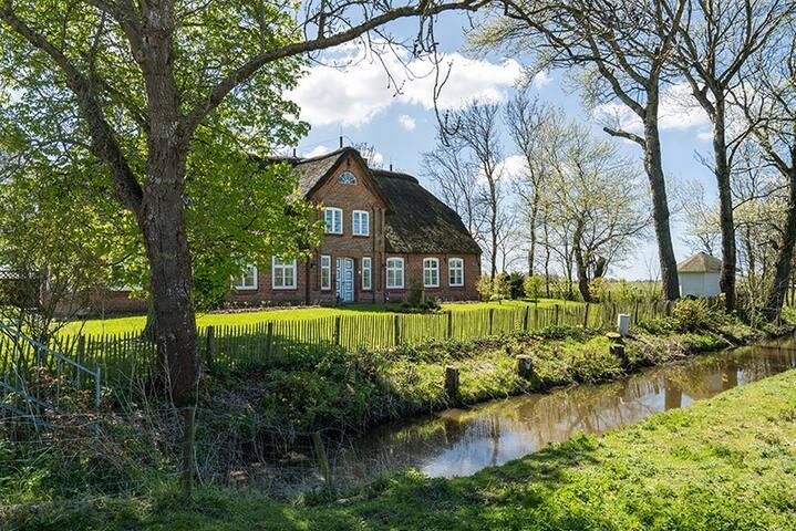 Friesenhof Benen Diken: Ferienwohnung Nis Puk - Tetenbüll - Departamento