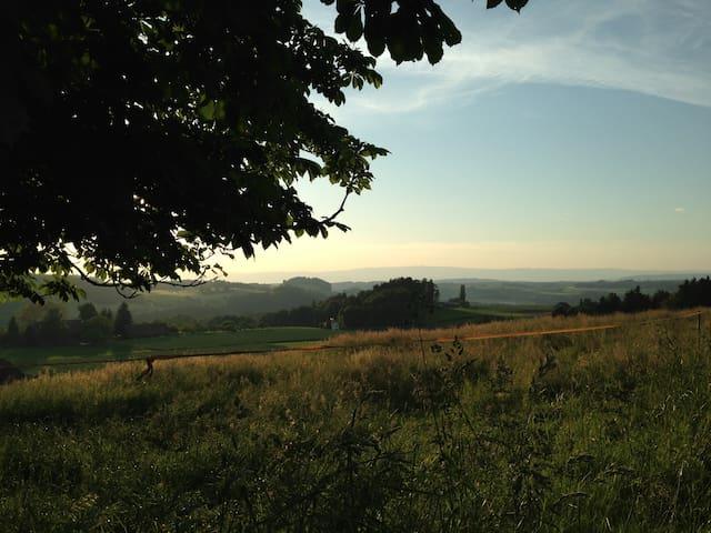 Farbe, Licht, Aussicht, Wald & Wiesen - bei Bern!