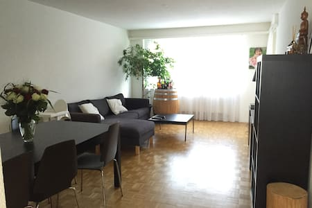 4 Room Apartment in Wettingen - Wettingen
