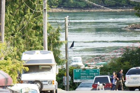The Blue Cabin harbour side accom - Stuga