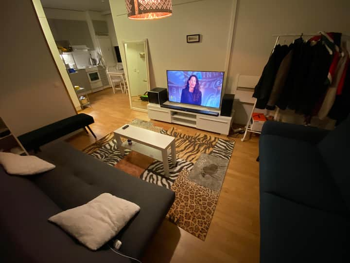 44m2  beautiful apartment with everything needed.