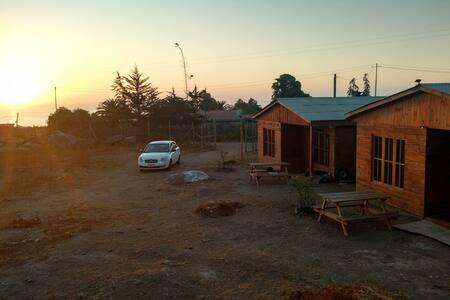 totoralillo casas y cabañas thania