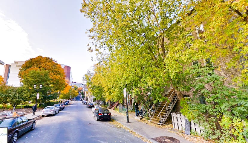 Our beautiful street and best neighborhood in Montreal!