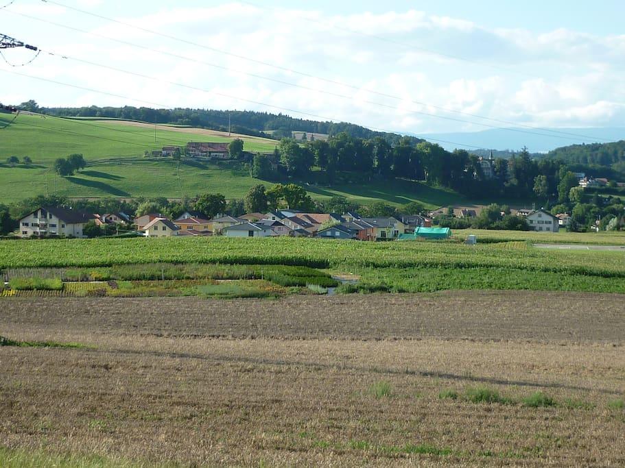 Situation : Vue du quartier dans lequel se trouve la maison, en direction du Nord, avec le Plateau du Jura dans le fond