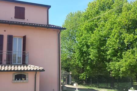 Forlì, Faenza, Ravenna, Mirabilan.. - Forlì - Apartment